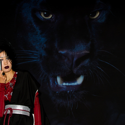 Black Panther I