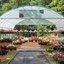 P1120760   Toscana Garden nr2  Papendijk  24 aug 2020