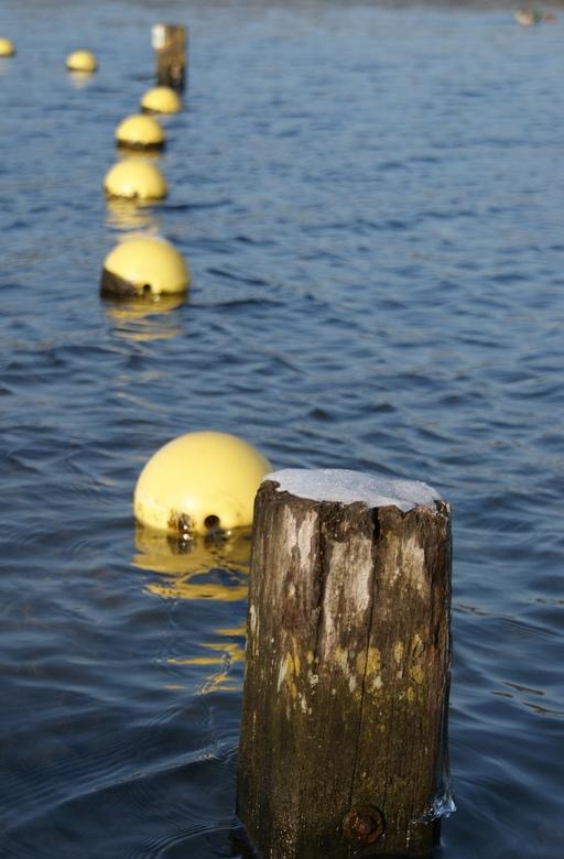Nature 3 - Dit word een serie over de natuur in Noord-Holland. Fraaie landschaps-opnames in de laatste dagen van 2008.Het is wat nieuws, dus laat je m