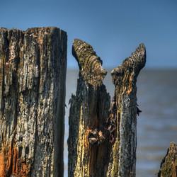 Hek in de Waddenzee