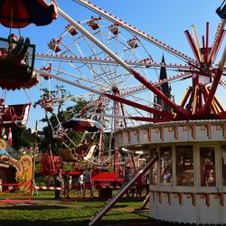 Festival Sint Rosa