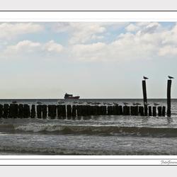 De zee 14