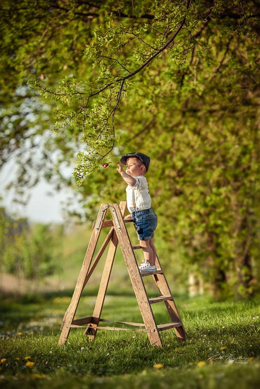 Little farmer - Mijn zoontje Dean,<br /> <br /> Gemaakt uit 2 foto&#039;s op een foto staat mijn vrouw bij zodat hij veilig op het trapje kan staan.