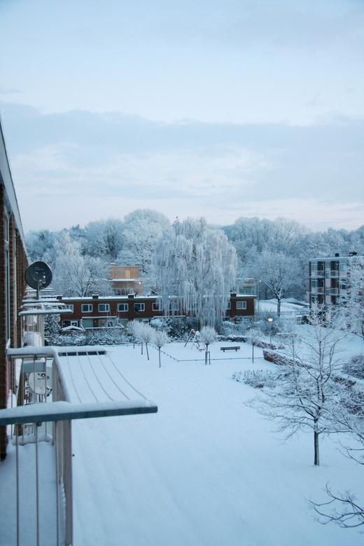 WinterGlow 2011 - Vroege zondagochtend na een avondje  wijnen met vrienden en voor een rondje schaatsen op jet Lonnekermeer Enschede...prachtig wakker