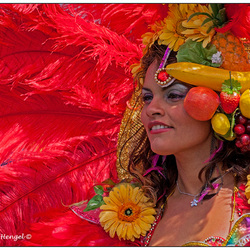 Zomercarnaval Rood