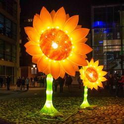GLOW 2019 - Project 21 Zonnebloemen voor van Gogh_II