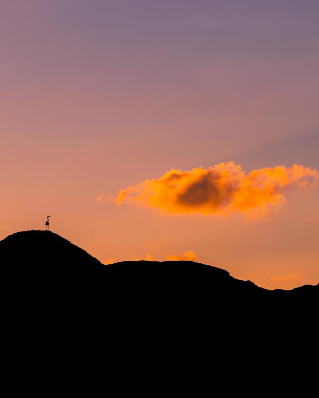 Zonsondergang Oman!  -