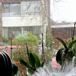 regen water