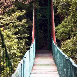 Hangbrug in Monteverde
