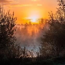 Blissfull morning