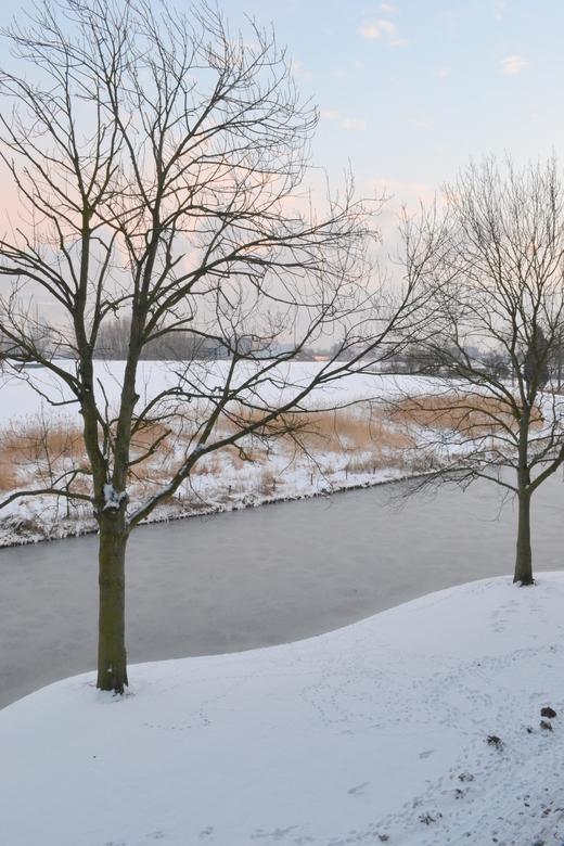 Winter wonder... - Winters landschap
