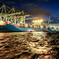 Containerterminal Maasvlakte II