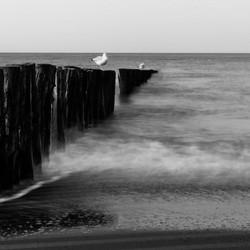 cadzand horizon 2