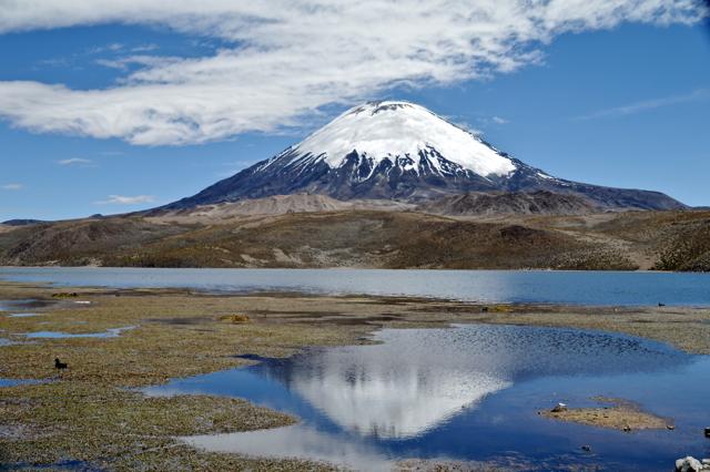Parinacota vulkaan