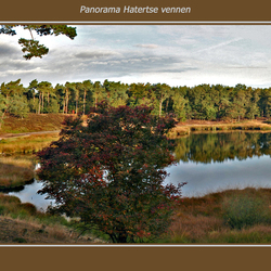 Panorama Hatertse Vennen