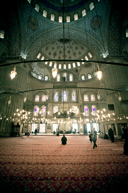 Hij is groot - Onlangs was ik met ZOOM in Istanbul en heb ik, samen met twee andere zoomers, de kans gekregen om daar drie dagen te fotograferen. Een
