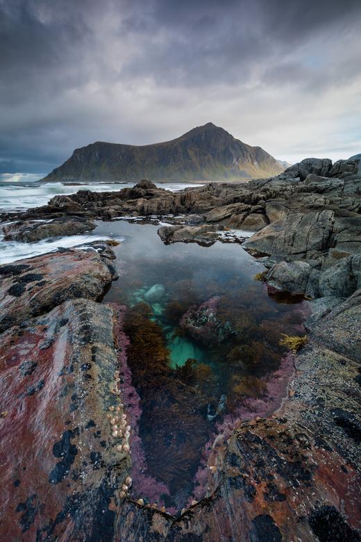 Earth's pallet - De Noorse kust is bezaaid met schitterende rotspoelen. Deze poelen zijn een wereld op zich, met fantastische kleuren, wieren en kraak