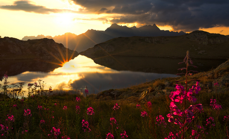 The power of light - Een zonsondergang aan het Lac Noir in Frankrijk.<br /> Het tegenlicht zorgde voor een mooie glow in de gekleurde bloemen..