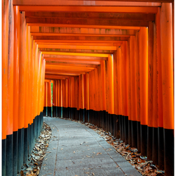 Impressions of Japan 01 - Fushimi Inari Taisha Shrine