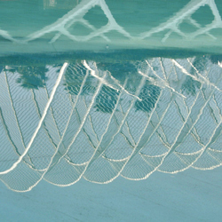 Calatrava's reflection