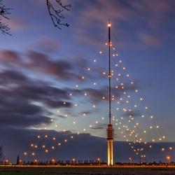 De grootste kerstboom ter wereld...