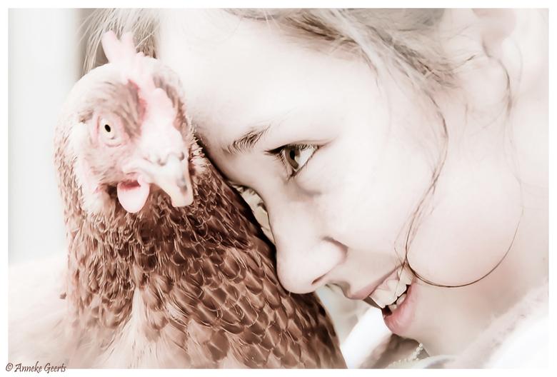 Kip 'zonder' kop - Toen ik op Mallorca kwam wonen kende ik maar een paar woorden spaans. En eentje ervan was &#039;pollo&#039;, kip. <br /> Veel late