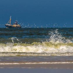 garnalenvisser voor de kust