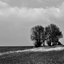 Eenvoudig landschap