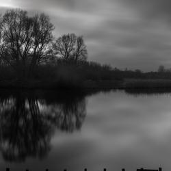 Lagebergse bos - Rotterdam