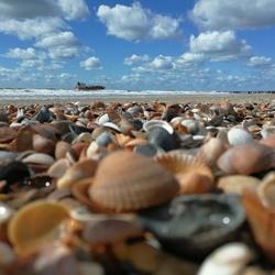 #Zoutelande, #zee, #kust, #rust