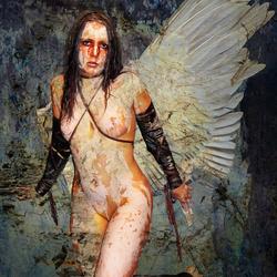 Angel 272