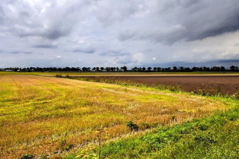 Drenthe 19 -