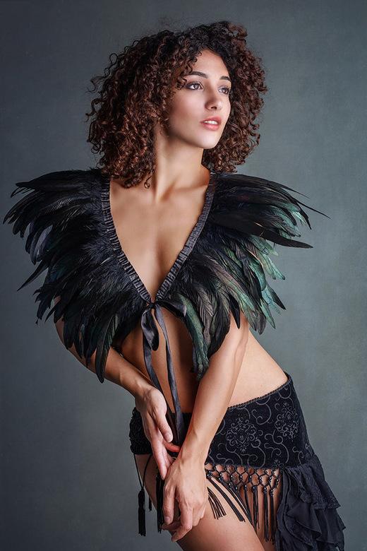 feathers - Mischkah