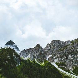 Detail in de bergen