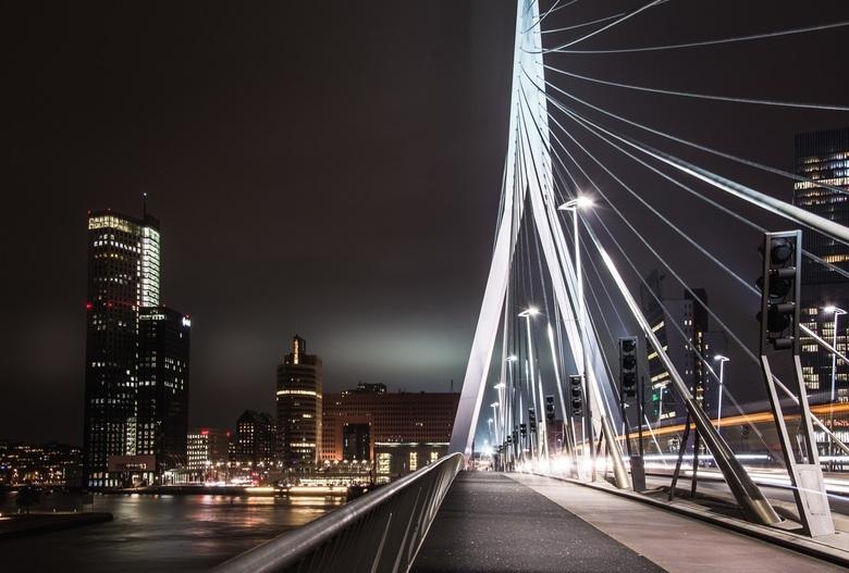 on-the-erasmus-bridge-in-rotterdam - On the Erasmus bridge