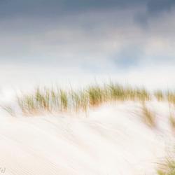 De duinen 2