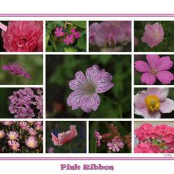Pink Ribbon Voor Diana