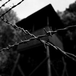 Westerbork 2