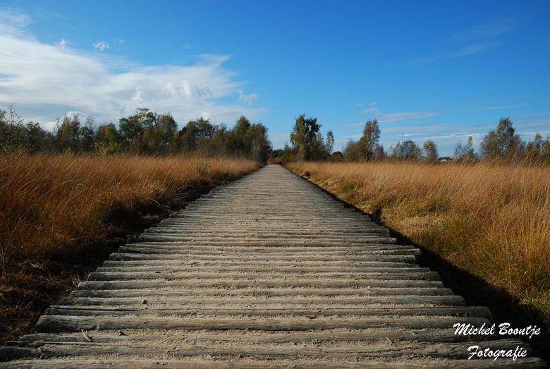 Palen Pad - In nationaal park de Grote Peel.