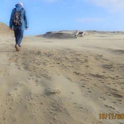 Willem de strandjutter