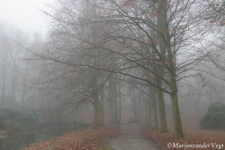 Vaag - Mist heeft altijd iets mysterieus,<br /> en je moet &#039;t vangen, want je weet nooit wanneer het zal zijn.<br /> <br /> Deze is op Ockenbu