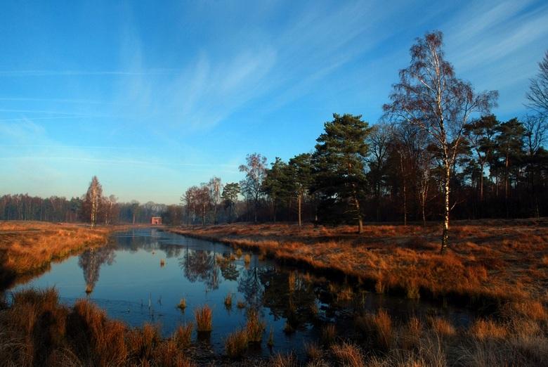 Landschap - Iets wat ik niet vaak doe, landschapsfotografie, dus ook hier alle tips welkom. Vanmorgen was het prachtig in het bos, het water op sommig
