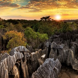 Petit Tsingy de Bemaraha