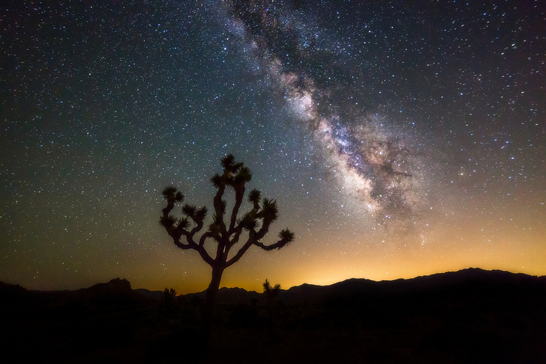 Stargazing - De melkweg in Joshua Tree National Park.