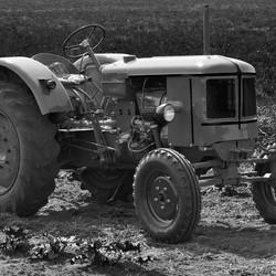 Oldtimer in het veld.