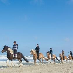 Paardrijden op het Texelse strand