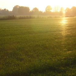 Opkomende zon en een beetje nevelig,het is net spinnerag