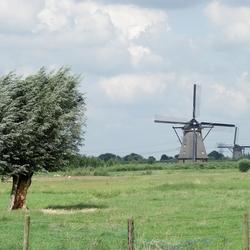 Landschap met molens