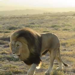 Zuid Afrika- o wat ben ik stoer