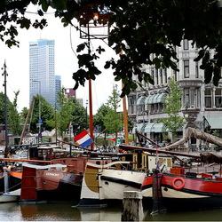 Rotterdam 114.
